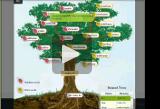 Root Tree video